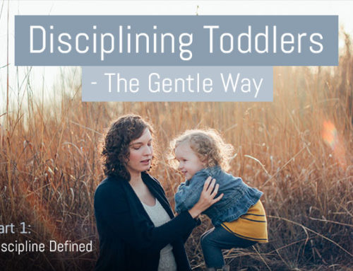 Discipline Your Toddler Effectively – The Gentle Way – Part 1