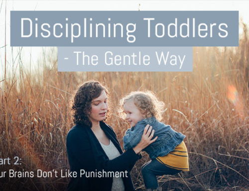 Discipline Your Toddler Effectively – The Gentle Way – Part 2